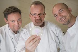 Professor Huw Taylor, Dr James Ebdon and PhD student Emanuele Sozzi
