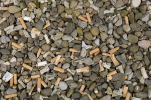 Cigarette ends on the beach