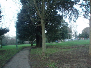 Easthill_Park - image by Paul Gillett from www.geograph.org.uk