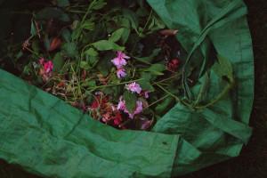 Garden waste by derya on Flickr