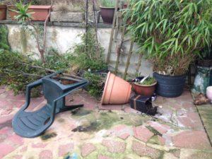 Toxi garden
