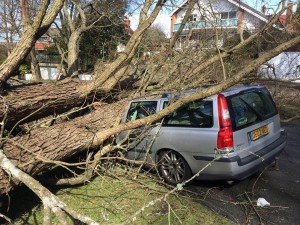 Storm Katie takes its toll in Surrenden Crescent, Brighton. Picture by John Thompson