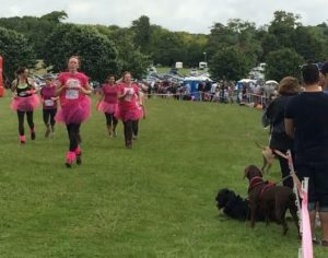 Race for Life 2016-2 Picture by Tim Hodges