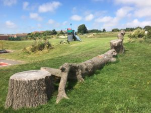 A play log in Hollingdean Park