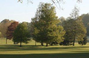 preston-park-trees-autumn-gv