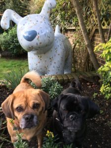 Winterlily-and-puggles-768x1024